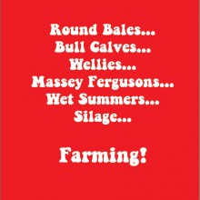 Farming round bales bull calves wellies masscy fergusons wet summers farming!