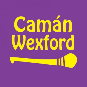 gaa baby clothes caman wexford personalised baby