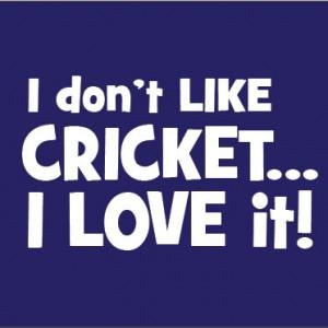 I don't like cricket, I love it. baby clothes gift