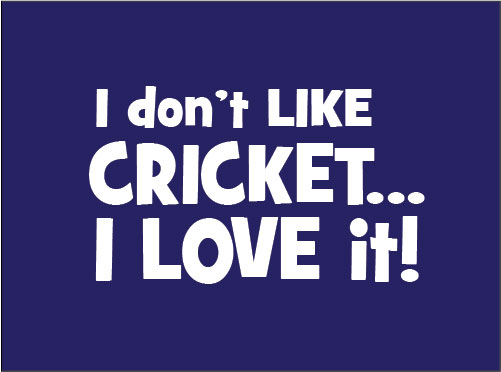 I don't like cricket, I love it. baby clothes gift