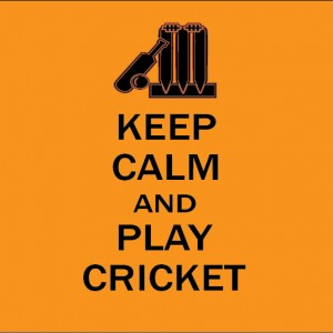 keep calm and play cricket baby clothes gift